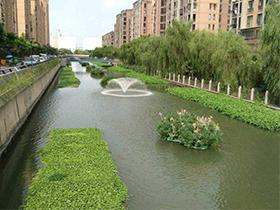 河道生态修复工程