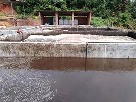 养猪厂废水处理解决方案