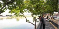 东莞万江53条河涌今年将实现全部消除黑臭